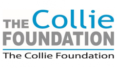 Collie Foundation